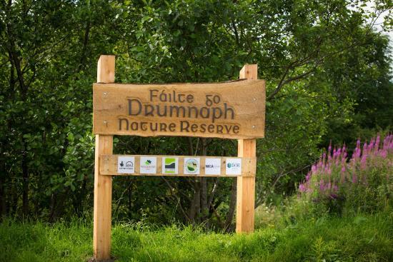 Drumnaph Nature Reserve 1