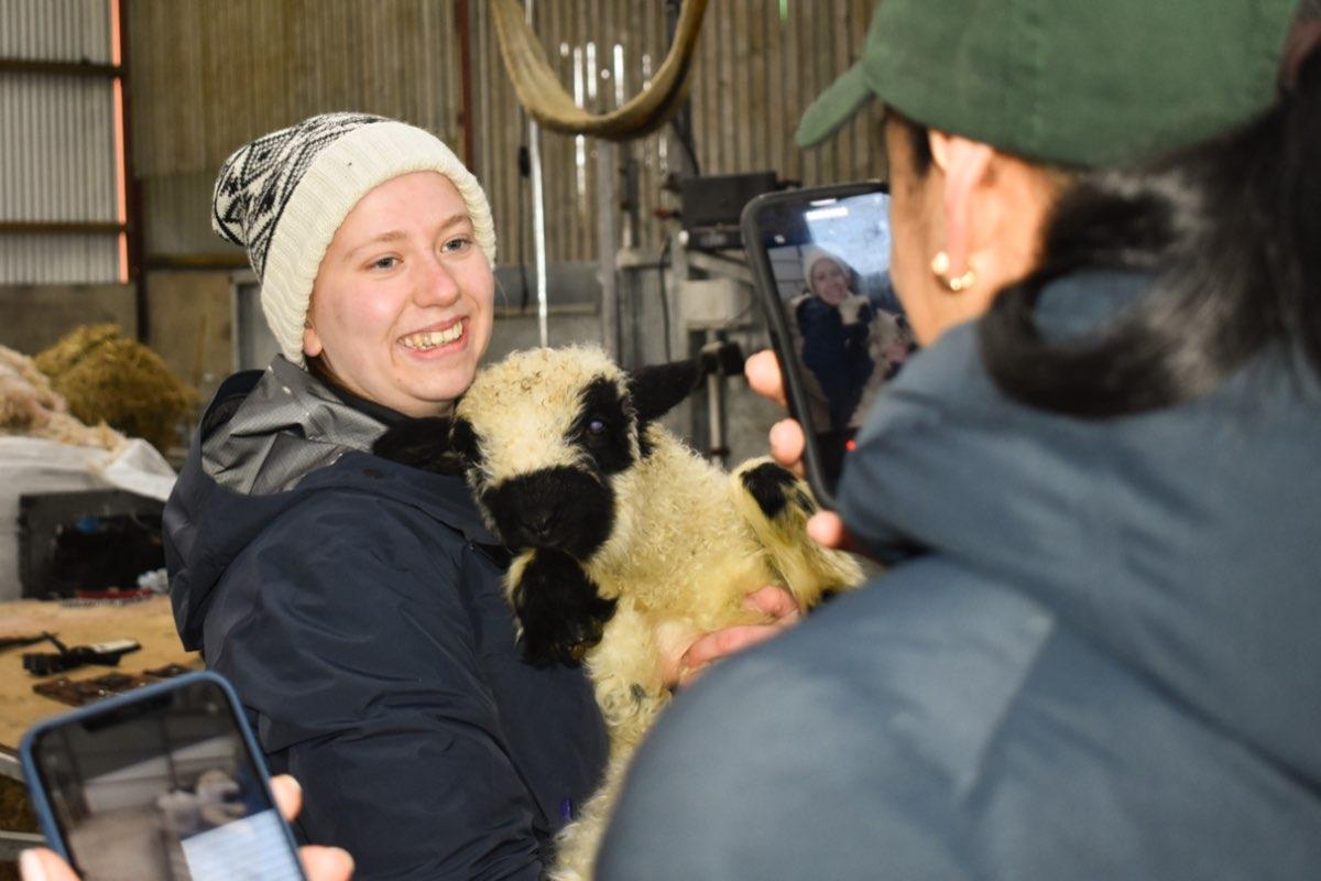Glenshane Country Farm 22