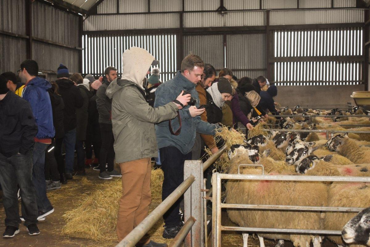 Glenshane Country Farm 30