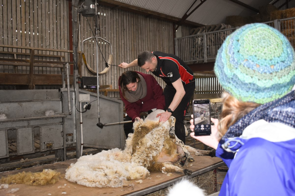 Glenshane Country Farm 35