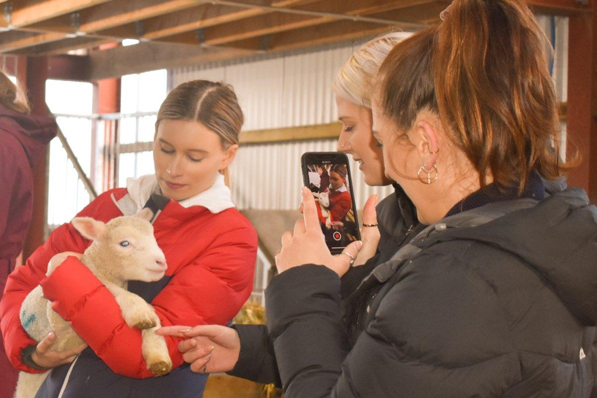 Glenshane Country Farm 38
