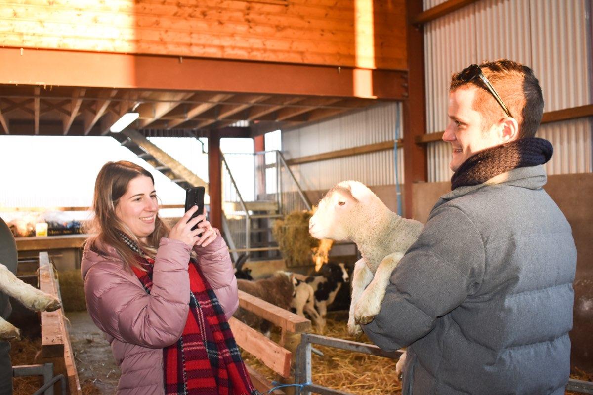 Glenshane Country Farm 45