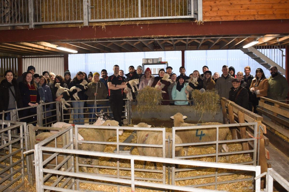 Glenshane Country Farm 46