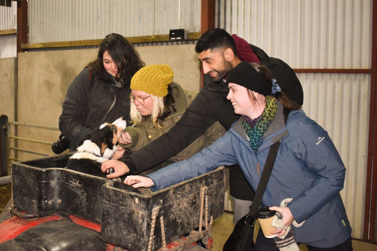 Glenshane Country Farm 48