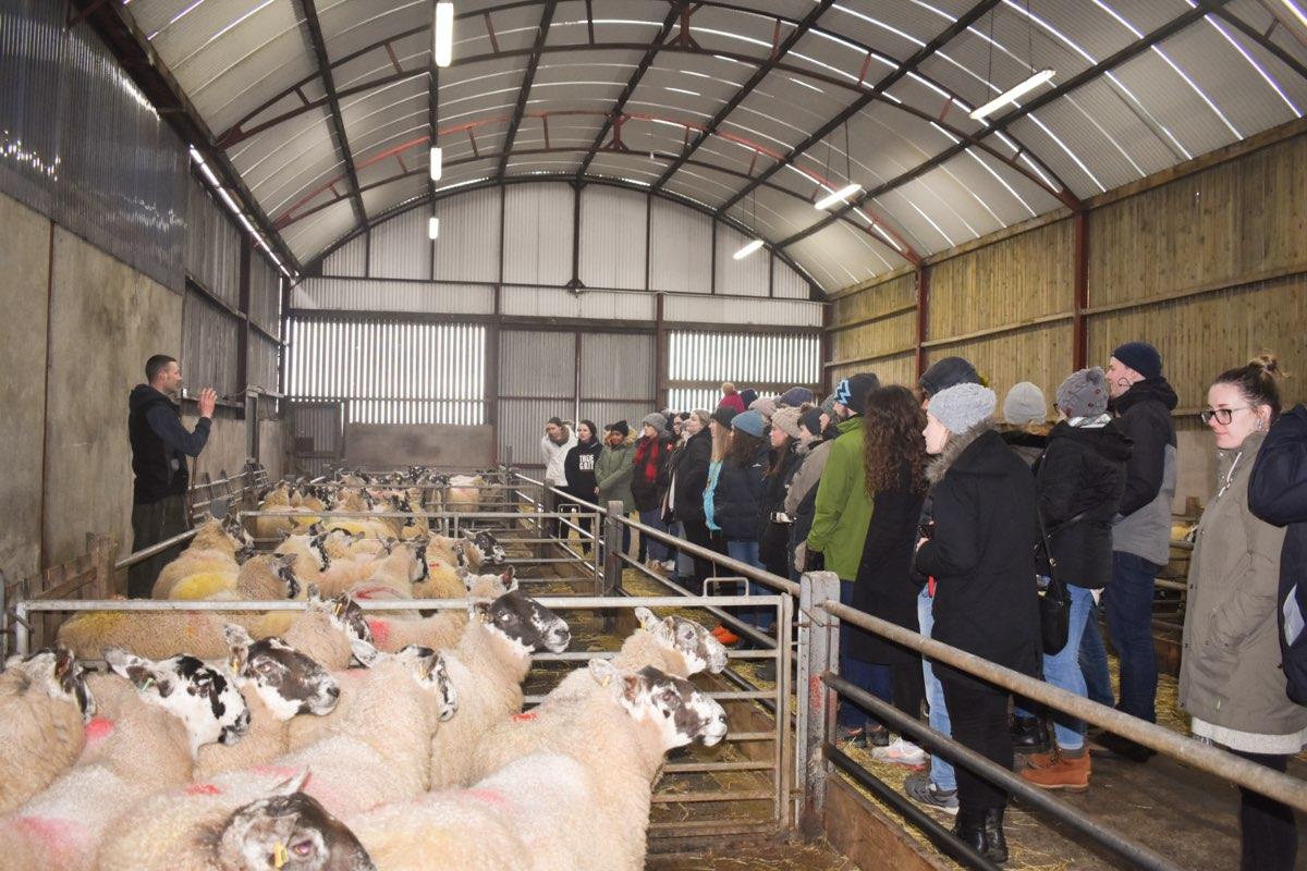 Glenshane Country Farm 50