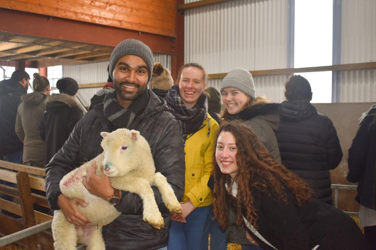 Glenshane Country Farm 51