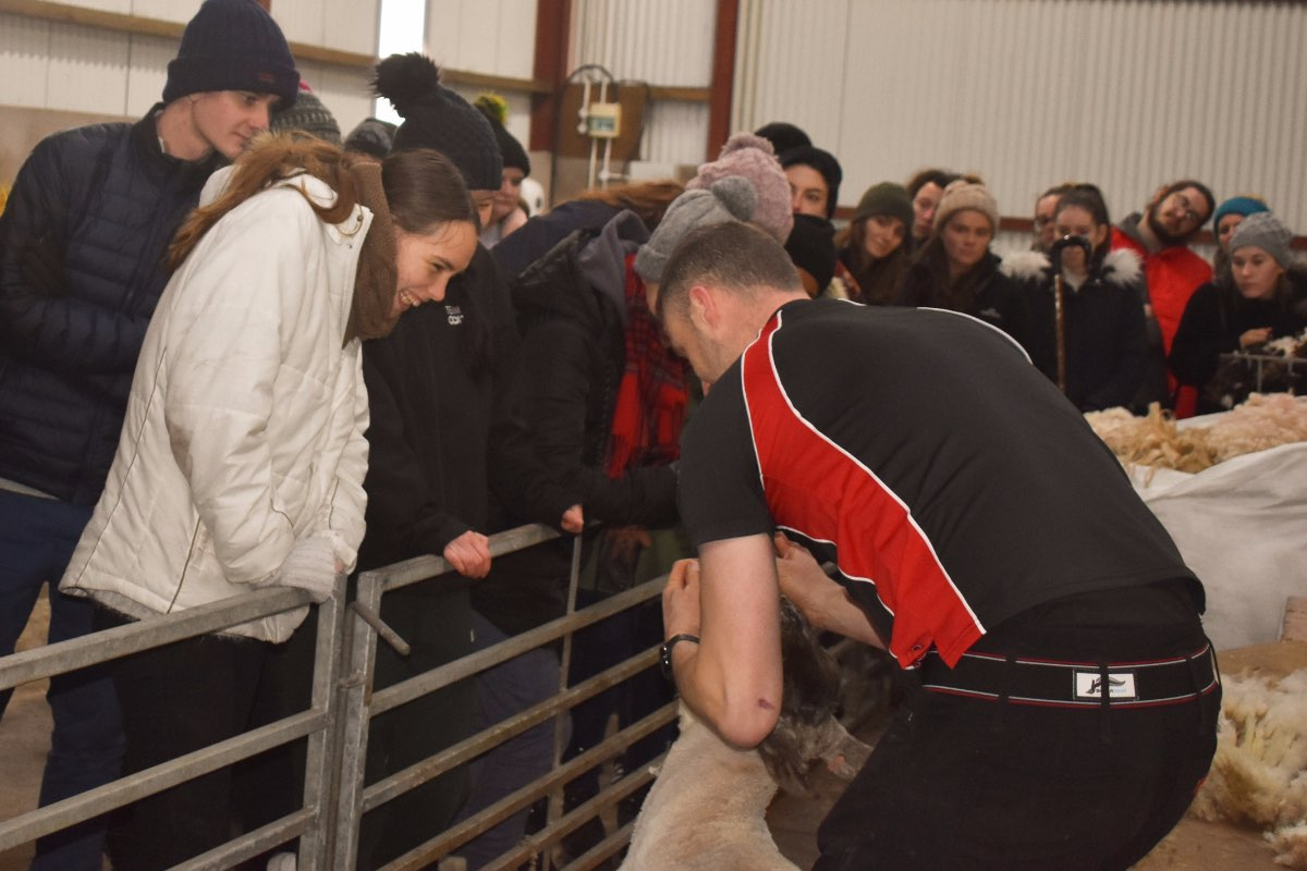 Glenshane Country Farm 52