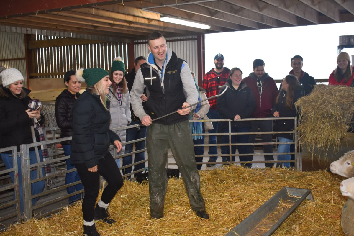 Glenshane Country Farm 55