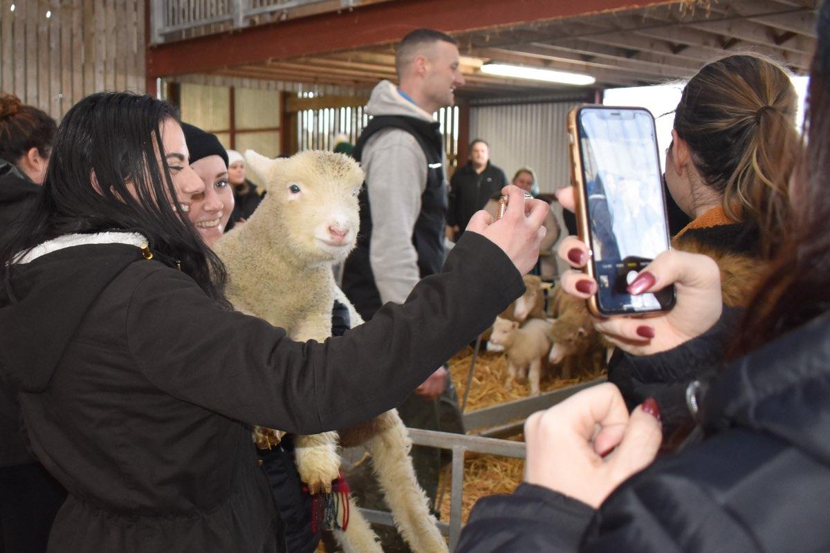 Glenshane Country Farm 56